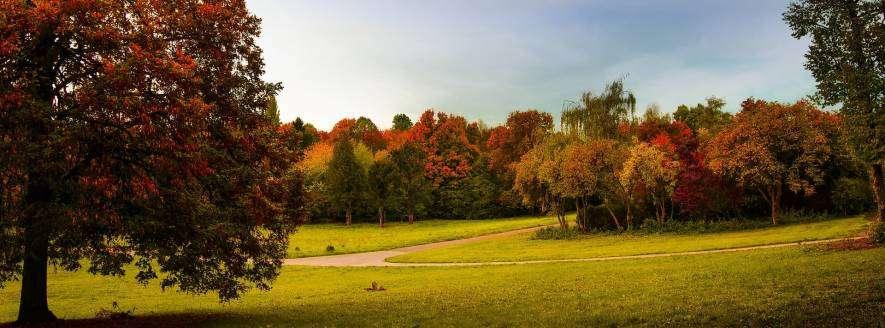 Stuttgart Parks & Recreation