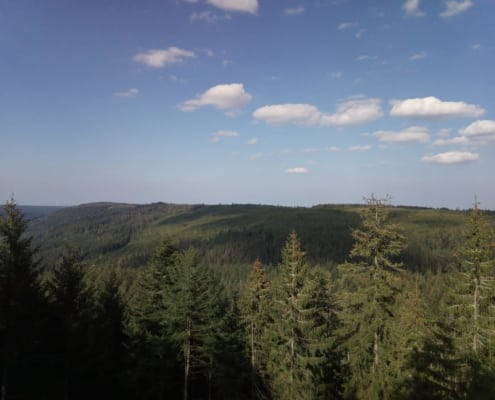 Black Forest overview